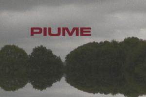 Piume – Nuovo singolo